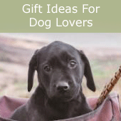 Gifts for dog lovers - puppy in game bag